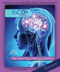 The-Electrifying-Nervous-System-by-Dr.-Laina-Callentine